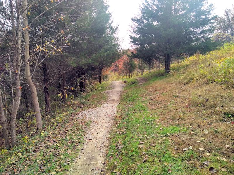 Initial trail