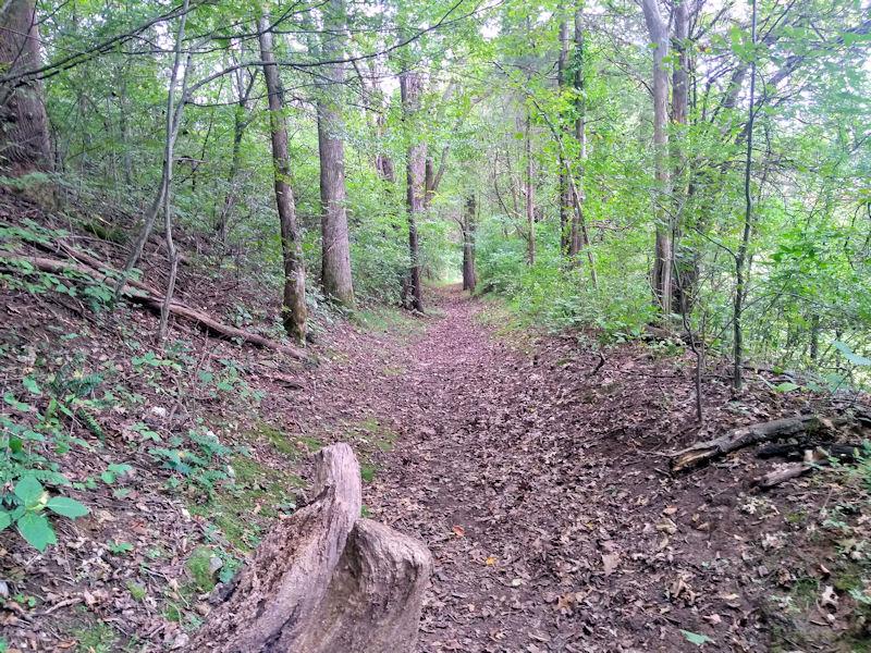 Stafford Farm TR Woods