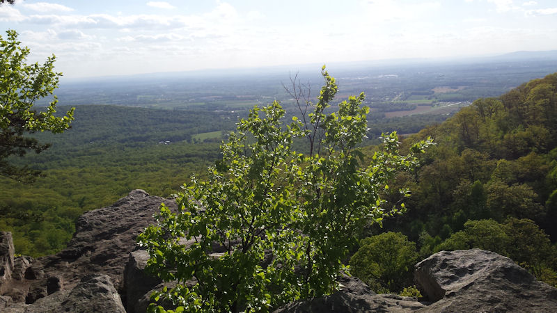 View from Annapolis Rocks, MD