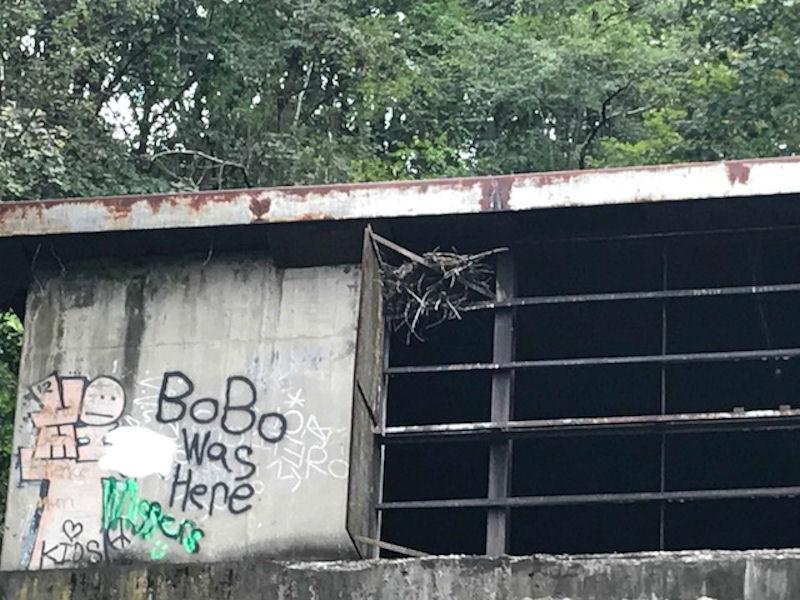 Hawks nest, Rays Hill Tunnel