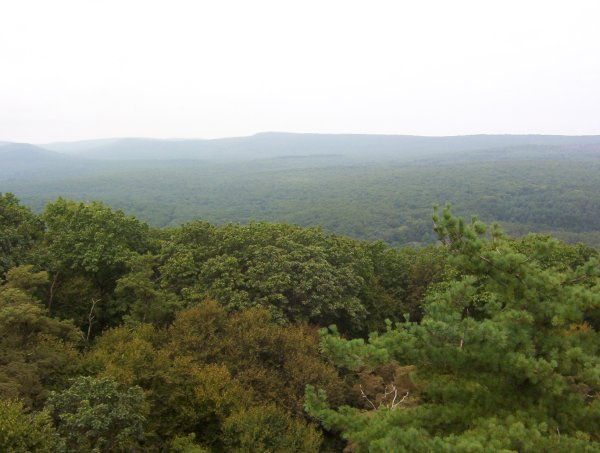 View from Pole Steeple, PA
