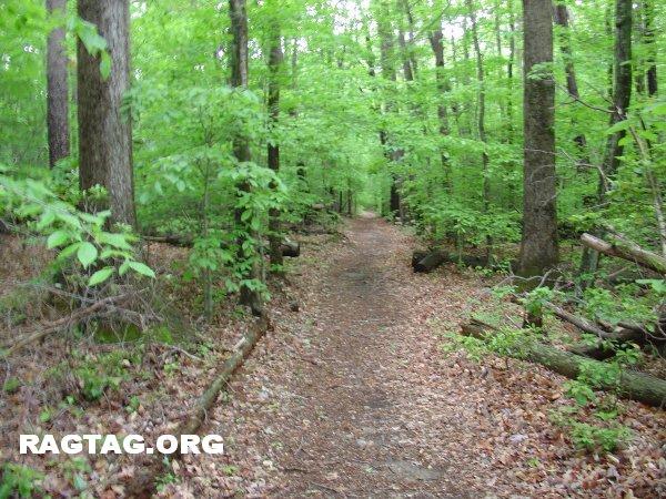Along the Bobcat Ridge Trail