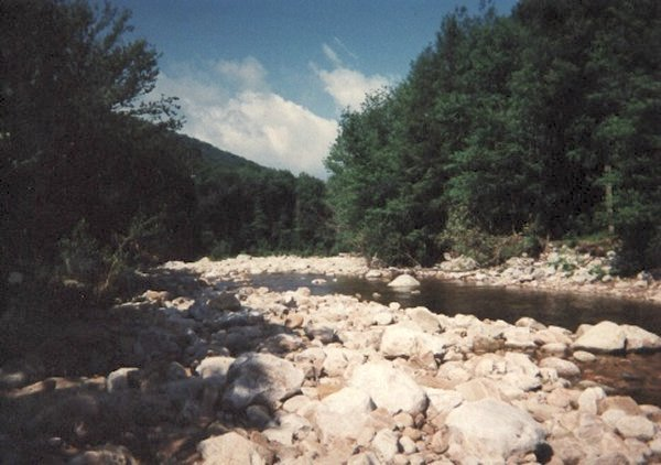 View of Red Creek in the Dolly Sods Wilderness Area