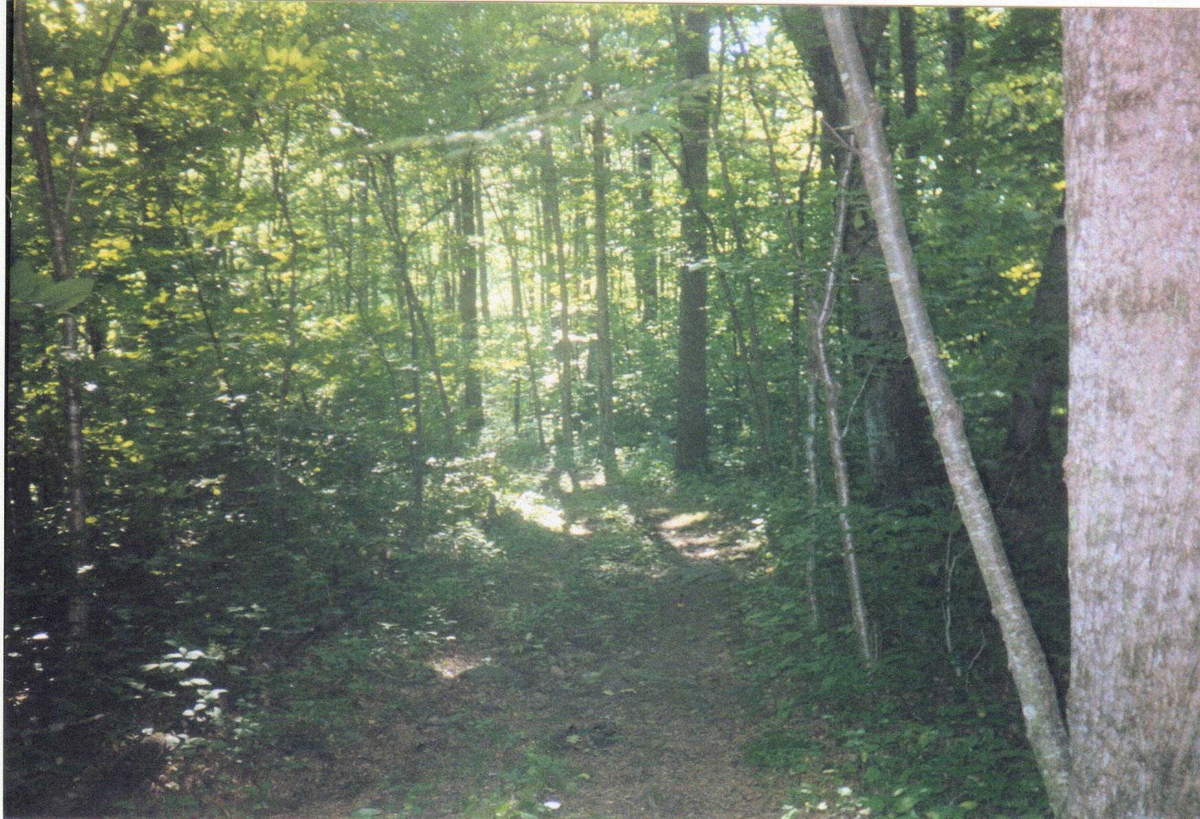 Staunton River Trail, VA