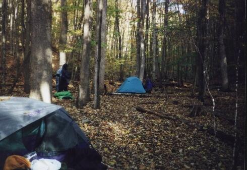 Base camp along Laurel Fork, VA