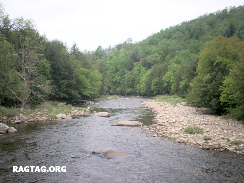 View of Loyalsock Creek, PA