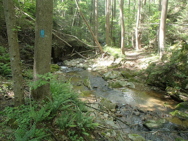 M-DT stream crossing in MD