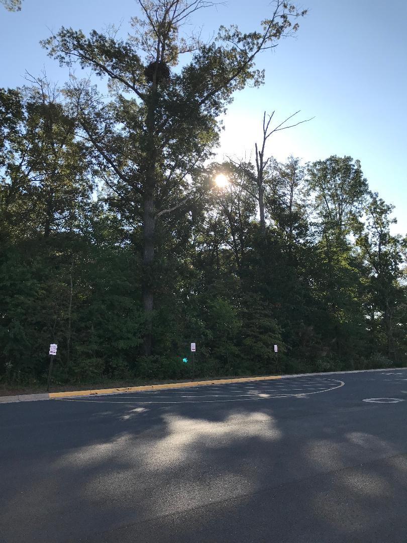 Eagles nest & no parking zone