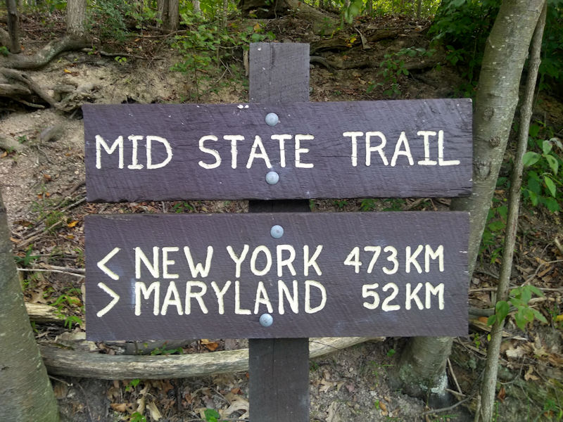 The MST is measured in kilometers