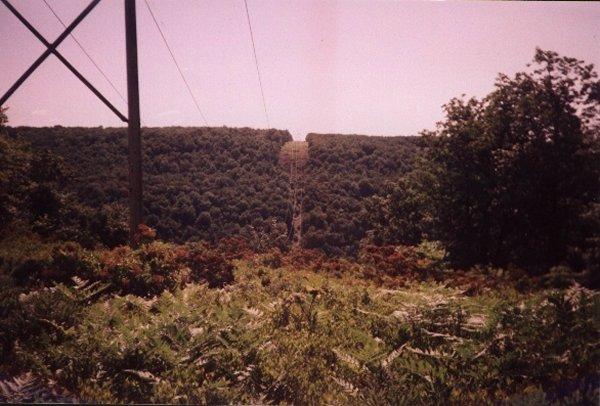 View near Wildcat Rock