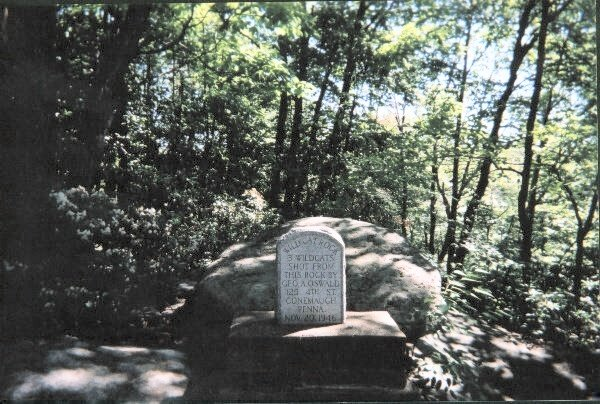 Marker at Wildcat Rock