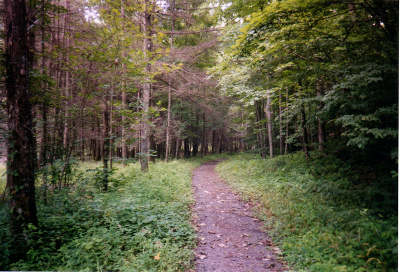South end, Ramseys Draft Trail
