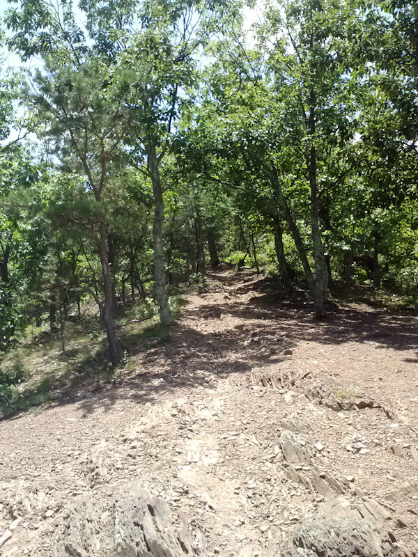 Buzzard Rock Trail, GWJNF, VA