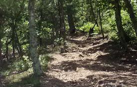 Buzzard Rock Trail, VA