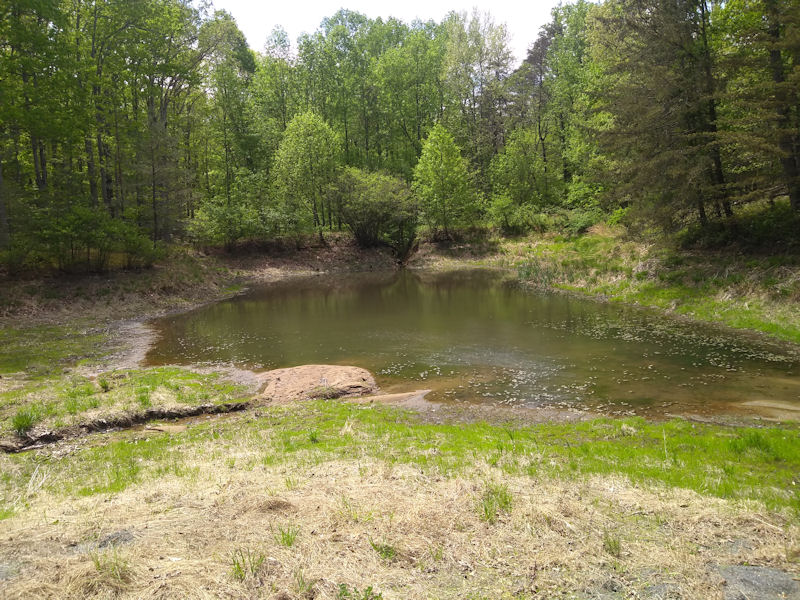 Lake that was breached