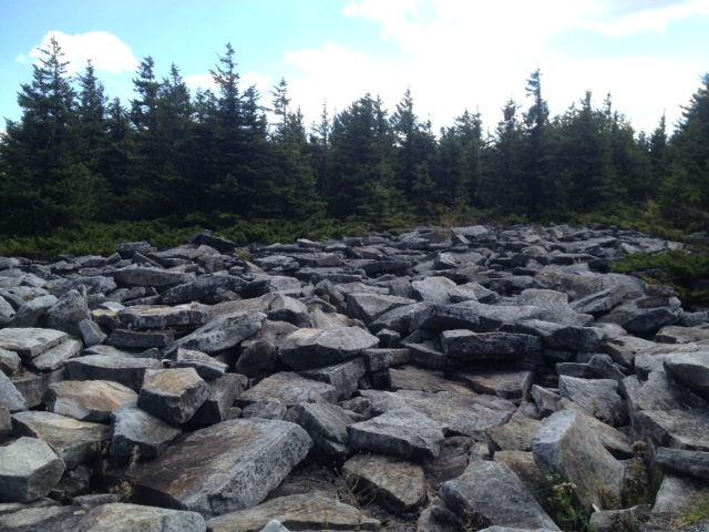 Boulder Flow, Spruce Knob, WV