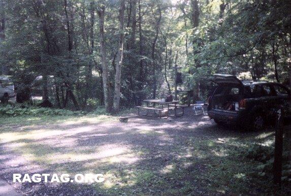 Campsite 47 at Swallow Falls SP, MD