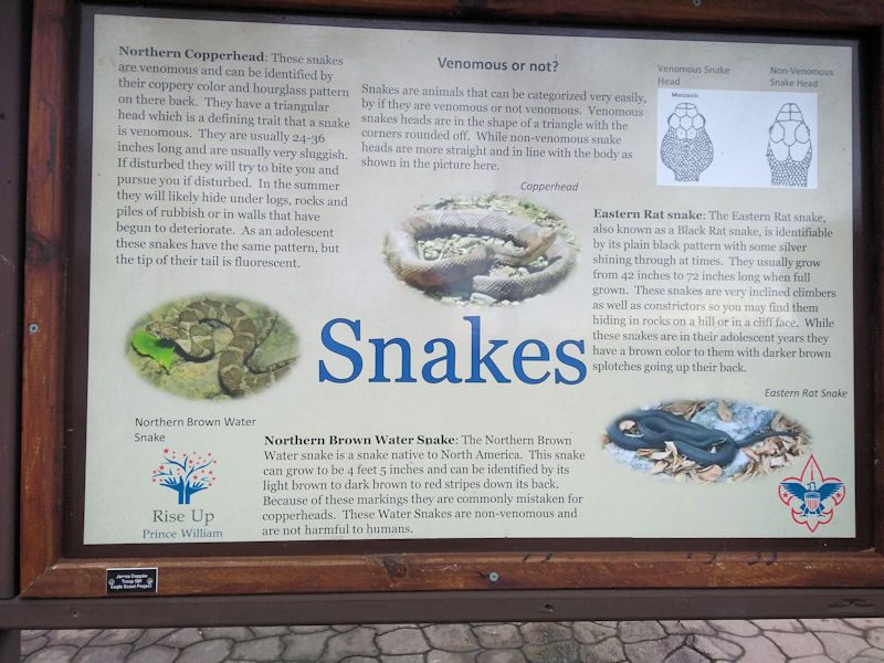 Plaque about snakes