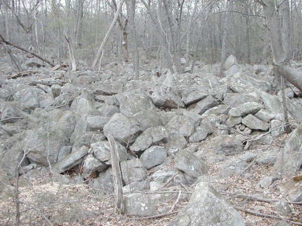 One of many boulder fields