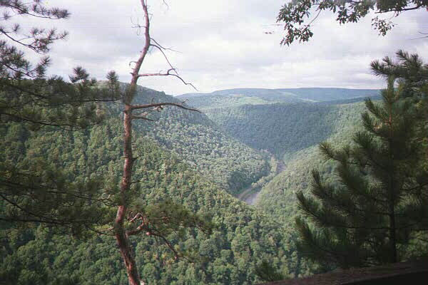 Southern terminus of the West Rim Trail near Blackwell, PA